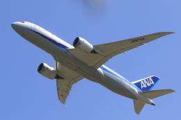 多楽さんが、成田国際空港で撮影した全日空 787-8 Dreamlinerの航空フォト(写真)