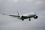 beimax55さんが、成田国際空港で撮影したエア・カナダ 787-8 Dreamlinerの航空フォト(写真)