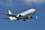 たっしーさんが、那覇空港で撮影した日本トランスオーシャン航空 737-8Q3の航空フォト(写真)