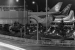 鯉ッチさんが、伊丹空港で撮影した全日空 747SR-81の航空フォト(写真)