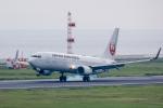 Y-Kenzoさんが、大分空港で撮影した日本航空 737-846の航空フォト(写真)