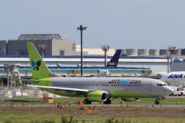 多楽さんが、成田国際空港で撮影したジンエアー 737-8Q8の航空フォト(写真)