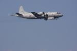 元青森人さんが、相模湾で撮影した海上自衛隊 P-3Cの航空フォト(写真)