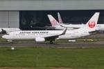 たみぃさんが、台湾桃園国際空港で撮影した日本航空 737-846の航空フォト(写真)