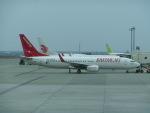 ヒロリンさんが、那覇空港で撮影したイースター航空 737-86Jの航空フォト(写真)