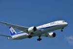 たっしーさんが、那覇空港で撮影した全日空 787-9の航空フォト(写真)