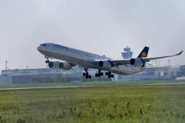 gomaさんが、ミュンヘン・フランツヨーゼフシュトラウス空港で撮影したルフトハンザドイツ航空 A340-642の航空フォト(飛行機 写真・画像)