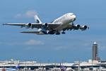 パンダさんが、成田国際空港で撮影したマレーシア航空 A380-841の航空フォト(写真)