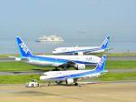 ナナオさんが、羽田空港で撮影した全日空 A320-211の航空フォト(飛行機 写真・画像)