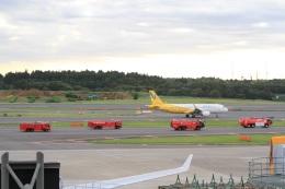 y-dynastyさんが、成田国際空港で撮影したバニラエア A320-214の航空フォト(写真)