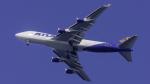 coolinsjpさんが、仁川国際空港で撮影したアトラス航空 747-45EF/SCDの航空フォト(写真)