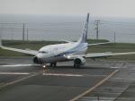 ヒロリンさんが、稚内空港で撮影した全日空 737-881の航空フォト(写真)