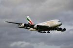 beimax55さんが、成田国際空港で撮影したエミレーツ航空 A380-861の航空フォト(写真)