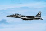 きゅうさんが、小松空港で撮影した航空自衛隊 F-15DJ Eagleの航空フォト(写真)