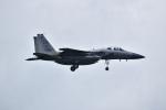 kon chanさんが、嘉手納飛行場で撮影したアメリカ空軍 F-15C-40-MC Eagleの航空フォト(写真)