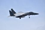 kon chanさんが、嘉手納飛行場で撮影したアメリカ空軍 F-15C-31-MC Eagleの航空フォト(写真)