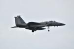 kon chanさんが、嘉手納飛行場で撮影したアメリカ空軍 F-15C-38-MC Eagleの航空フォト(写真)