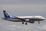 小牛田薫さんが、羽田空港で撮影した全日空 A320-211の航空フォト(写真)