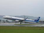 flyflygoさんが、熊本空港で撮影した全日空 A321-211の航空フォト(写真)
