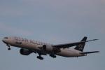 imosaさんが、羽田空港で撮影した全日空 777-381/ERの航空フォト(写真)