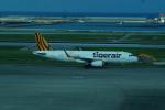 FRTさんが、那覇空港で撮影したタイガーエア台湾 A320-232の航空フォト(飛行機 写真・画像)