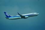 FRTさんが、那覇空港で撮影した全日空 737-881の航空フォト(写真)