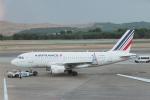 とおまわりさんが、マドリード・バラハス国際空港で撮影したエールフランス航空 A319-111の航空フォト(写真)