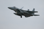 bakさんが、岐阜基地で撮影した航空自衛隊 F-15J Kai Eagleの航空フォト(写真)