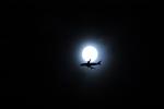 契丹さんが、中部国際空港で撮影したボーイング 747-4J6(LCF) Dreamlifterの航空フォト(写真)