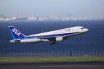 けいとパパさんが、羽田空港で撮影した全日空 A320-211の航空フォト(写真)