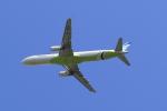 多楽さんが、成田国際空港で撮影したエアプサン A321-231の航空フォト(写真)