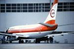 鯉ッチさんが、伊丹空港で撮影した南西航空 737-2Q3/Advの航空フォト(写真)