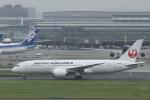 とらとらさんが、羽田空港で撮影した日本航空 787-8 Dreamlinerの航空フォト(写真)