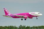 ちゃぽんさんが、成田国際空港で撮影したピーチ A320-214の航空フォト(写真)