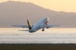 ShiShiMaRu83さんが、神戸空港で撮影したスカイマーク 737-8HXの航空フォト(飛行機 写真・画像)