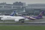 とらとらさんが、羽田空港で撮影したタイ国際航空 A350-941XWBの航空フォト(飛行機 写真・画像)