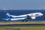 RUNWAY23.TADAさんが、羽田空港で撮影した全日空 787-8 Dreamlinerの航空フォト(写真)