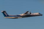 RUNWAY23.TADAさんが、熊本空港で撮影したANAウイングス DHC-8-402Q Dash 8の航空フォト(飛行機 写真・画像)