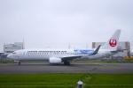 とらとらさんが、羽田空港で撮影した日本トランスオーシャン航空 737-8Q3の航空フォト(飛行機 写真・画像)