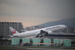 ジャガイモさんが、伊丹空港で撮影した日本航空 777-346の航空フォト(写真)