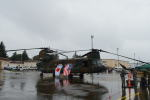 350JMさんが、横田基地で撮影した陸上自衛隊 CH-47Jの航空フォト(写真)