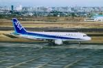 akinarin1989さんが、宮崎空港で撮影した全日空 A320-211の航空フォト(写真)