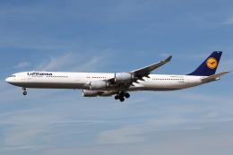 航空フォト:D-AIHH ルフトハンザドイツ航空 A340-600