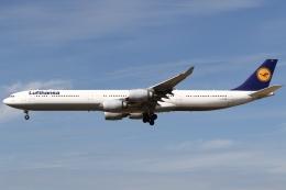 航空フォト:D-AIHX ルフトハンザドイツ航空 A340-600