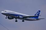 おみずさんが、福岡空港で撮影した全日空 A320-211の航空フォト(写真)