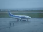 けろんさんが、稚内空港で撮影したエアーニッポン 737-54Kの航空フォト(写真)