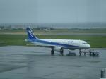 けろんさんが、稚内空港で撮影した全日空 A320-211の航空フォト(写真)