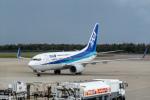 delawakaさんが、函館空港で撮影した全日空 737-781の航空フォト(写真)