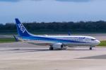 delawakaさんが、函館空港で撮影した全日空 737-881の航空フォト(写真)