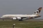 Itami Spotterさんが、クアラルンプール国際空港で撮影したエティハド航空 A380-861の航空フォト(写真)